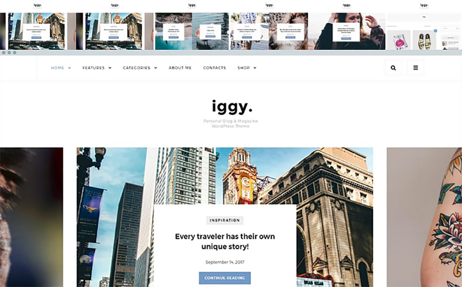 Iggy Wordpress Theme